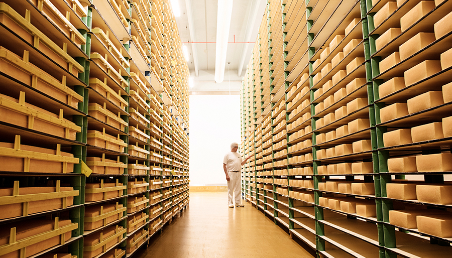 Rows of cheese in a storage room