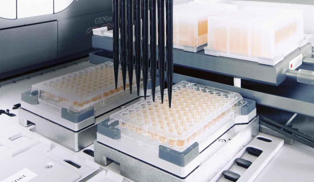 Lab plant health