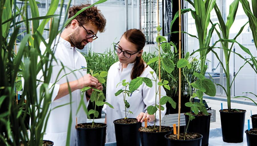 Plants lab people